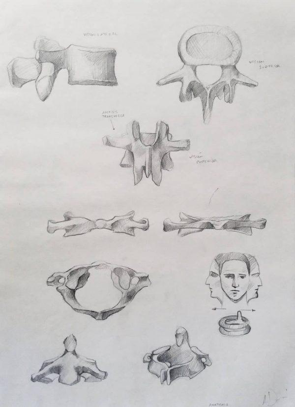 Dibujos de Anatomía -Fac. BBAA Sevilla. 2002. Alejandro Durán.